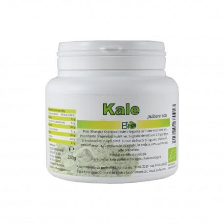 Kale (Brassica Oleracea) pulbere, BIO 250g - Deco Italia